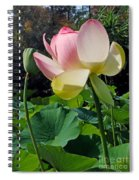 Lotus Lily Standing Tall Spiral Notebook