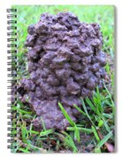 Louisiana Mud Up Close Two K O Nine Spiral Notebook