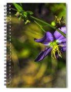 Louisiana Wildflower Spiral Notebook