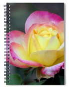 Love And Peace Spiral Notebook