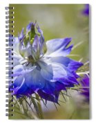 Love In The Mist - Nigella Spiral Notebook