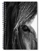 Love Me Spiral Notebook