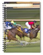 Love Of The Sport Spiral Notebook