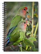 Lovebird Couple  Spiral Notebook