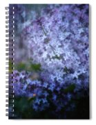 Lovely Lilac Spiral Notebook