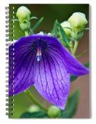 Lovely Monkshood Spiral Notebook
