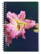 Lovely Pink Lilies Spiral Notebook