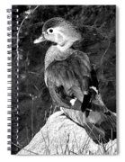 Lovely To Look At In Black And White                                                                 Spiral Notebook