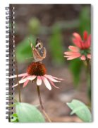 Lover Of Coneflowers Spiral Notebook