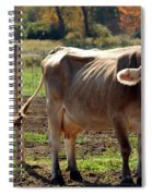Low Cow Spiral Notebook