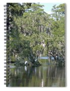 Lowcountry Landscape II Spiral Notebook