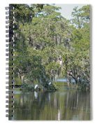 Lowcountry Landscape Spiral Notebook