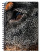 Loyal Guardian Spiral Notebook