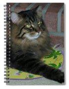 Lucky The Cat Spiral Notebook