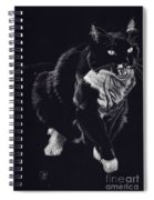 Lucy The Cat Spiral Notebook