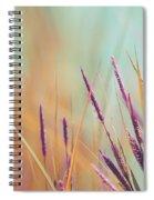 Luminis - S07b Spiral Notebook