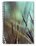 Luminis 02 - S01a Spiral Notebook