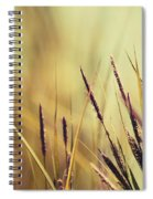Luminis -s02b - Yellow Spiral Notebook