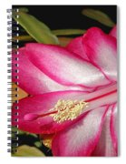 Luminous Cactus Flower Spiral Notebook