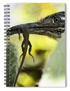 Lunch With A Roadrunner  Spiral Notebook