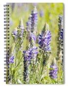 Lupine 2 Spiral Notebook