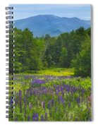 Lupine In Sugar Hill New Hampshire Spiral Notebook