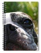 Luv A Mug Spiral Notebook