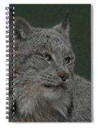 Lynx Painterly Spiral Notebook