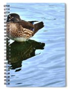 Ma And Pa Wood Duck Spiral Notebook