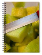 Macro Photo Of Knife Over Bowl Of Cut Musk Melon Spiral Notebook
