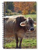 Mad Cow Tail Swish Spiral Notebook