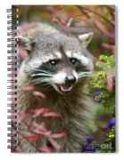 Mad Raccoon Spiral Notebook