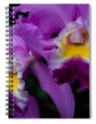 Maddie's Orchid Spiral Notebook