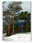 Madrone On Young Hill Spiral Notebook