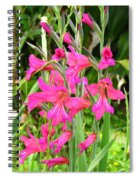 Magenta Flowers Spiral Notebook