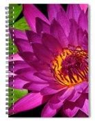 Magenta Waterlily Spiral Notebook