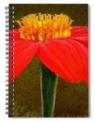 Magenta Zinnia Flower Spiral Notebook