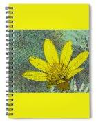 Magic Fern Flower 02 Spiral Notebook