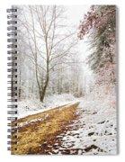 Magic Trail Spiral Notebook