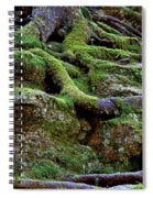 Magical Roots At Sabbath Day Spiral Notebook