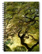 Magical Tree Spiral Notebook