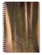 Magical Wood Spiral Notebook