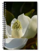 Magnificent Alabama Magnolia Blossom Spiral Notebook