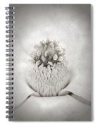 Magnolia 1 Spiral Notebook