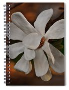 Magnolia Bloom Spiral Notebook