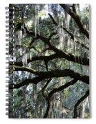 Magnolia Meets Live Oak Spiral Notebook