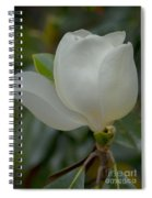 Magnolia Opening Spiral Notebook