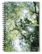 Magnolia Plantation Sc Spiral Notebook