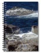 Maine Coast Surf Spiral Notebook