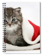 Maine Coon Kitten Spiral Notebook